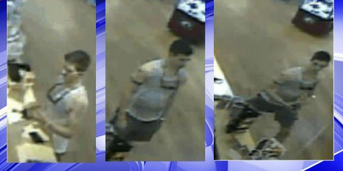 Mt. Pleasant police search for man in credit card fraud, vehicle break-in