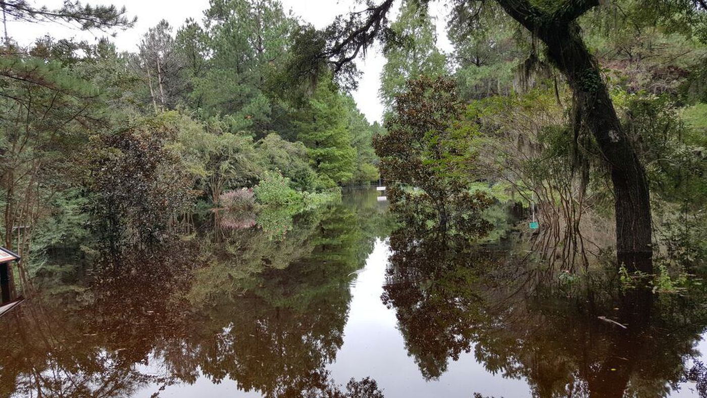 Cypress Gardens closes indefinitely after millions of dollars in ...