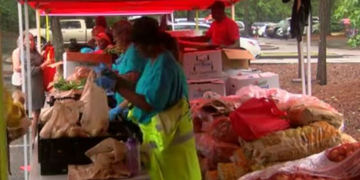 Lowcountry Food Bank hosting pop-up picnics to help those in need