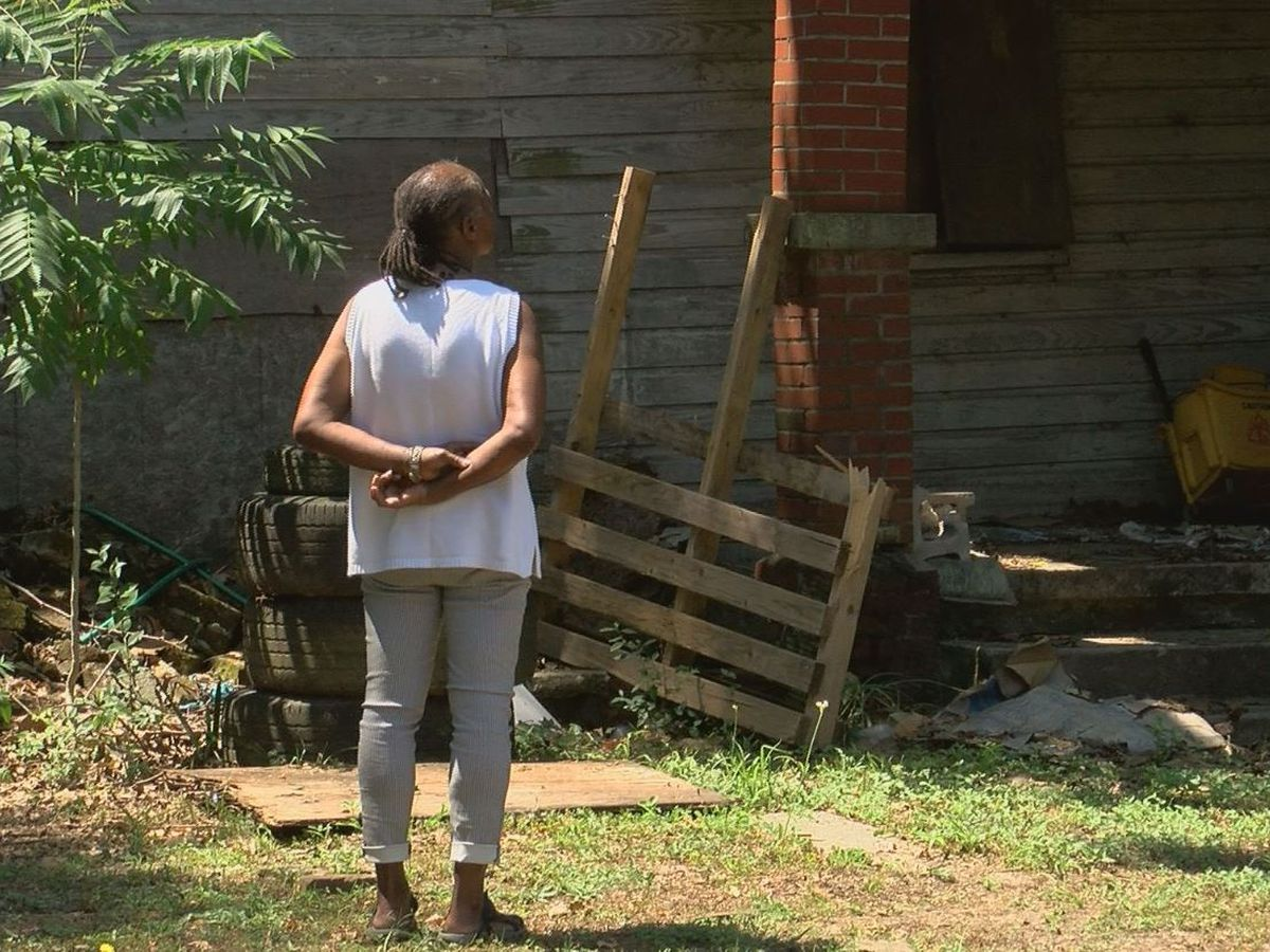 Charleston woman fighting to preserve Freedman's cabin