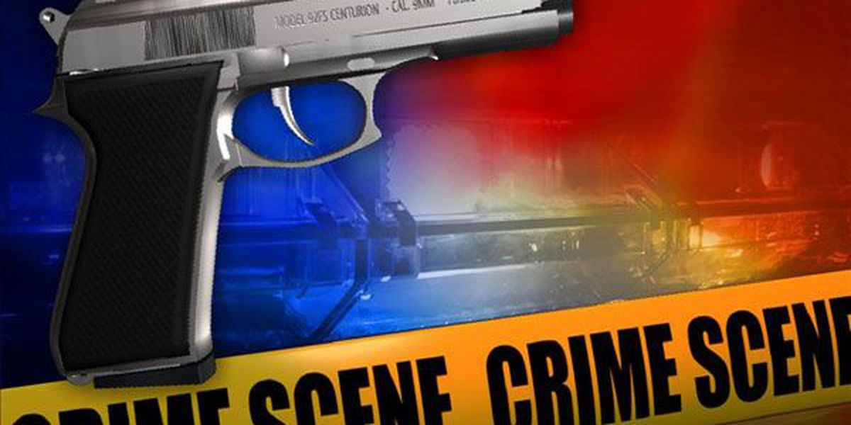 CPD: Mother opens fire on armed robbery suspects at downtown Charleston home