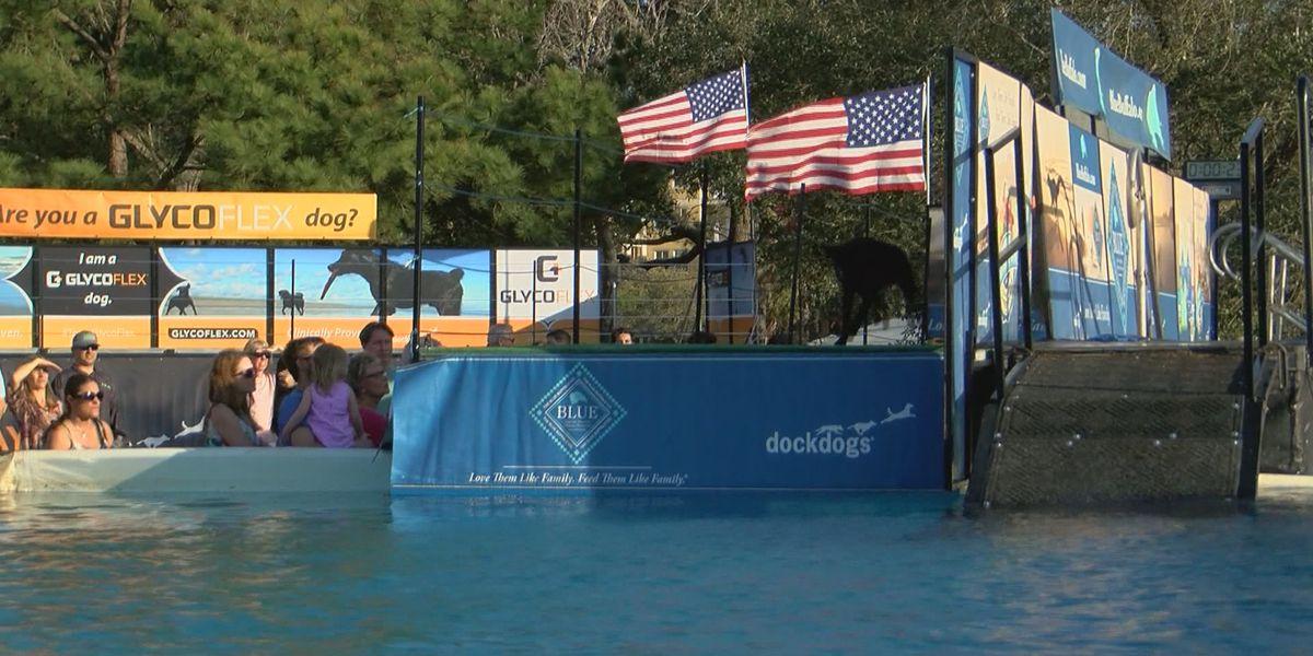 Southeastern Wildlife Expo returns to Downtown Charleston Friday