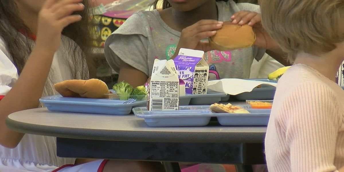 Students who receive free or reduced-price school meals will get federal food assistance, officials say