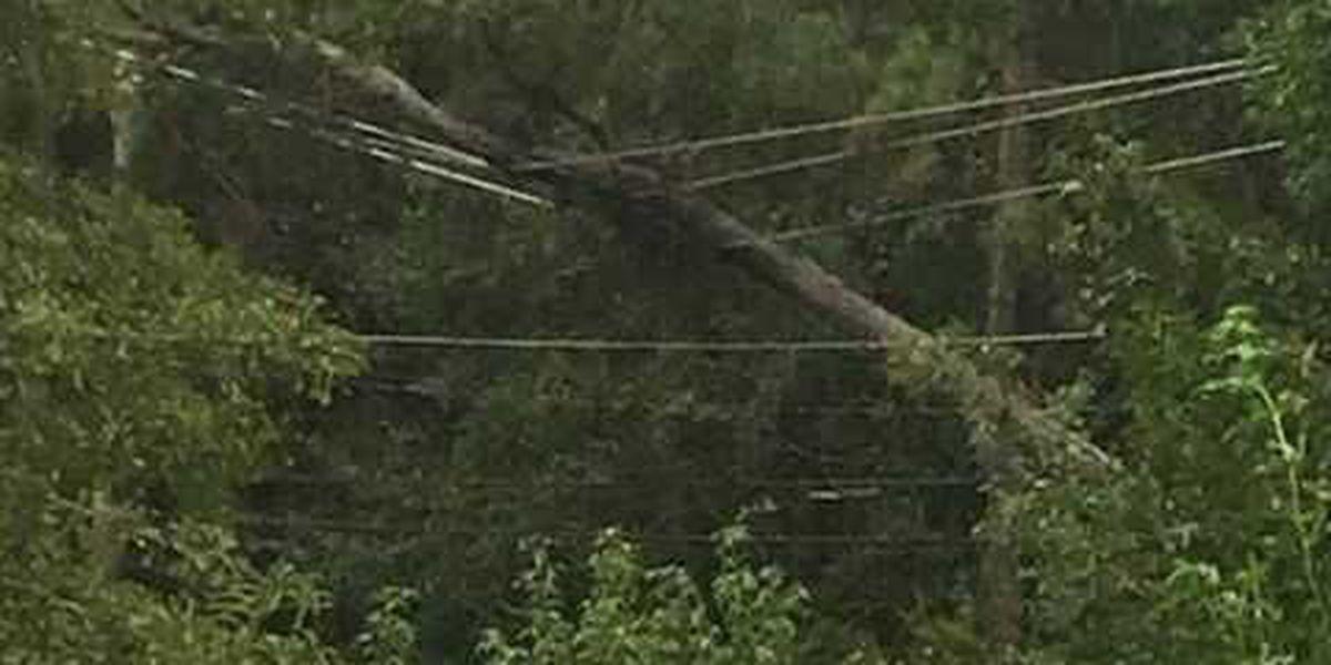 Tens of thousands without power as Tropical Storm Florence slams Carolinas