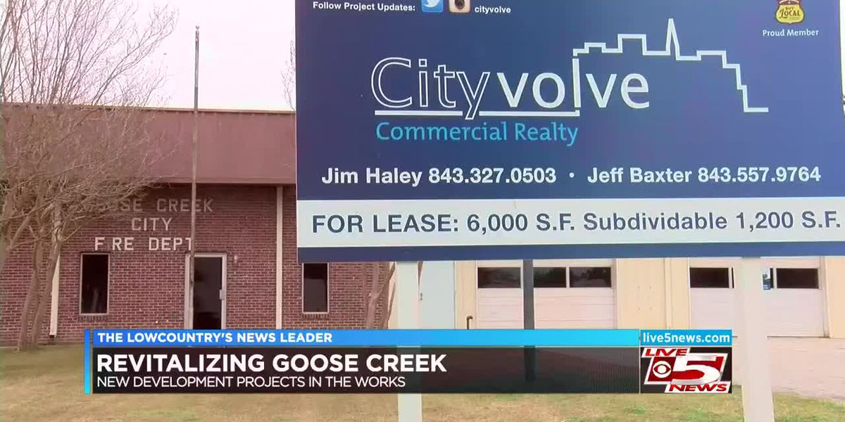 VIDEO: Goose Creek revitalization coming as soon as fall