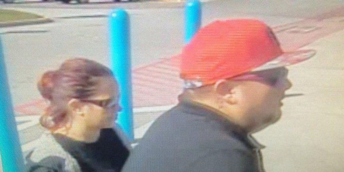 Pictures released of suspects accused of robbing elderly woman