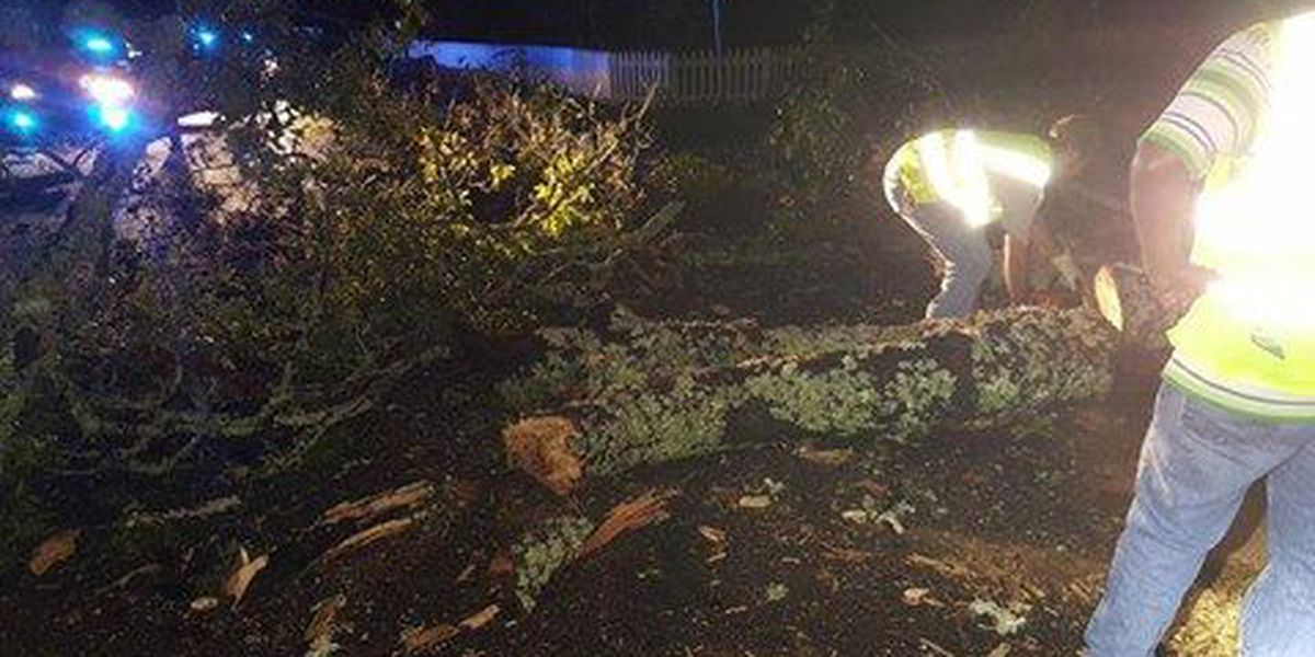 Power restored to thousands across the Tri-County following TS Hermine