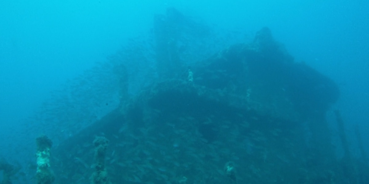 Dept. of Natural Resources works to expand artificial reef