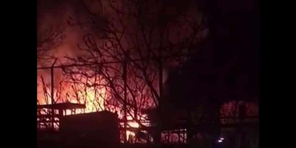 10 animals die after barn at African Safari Wildlife Park in Port Clinton, Ohio goes up in flames on Thanksgiving