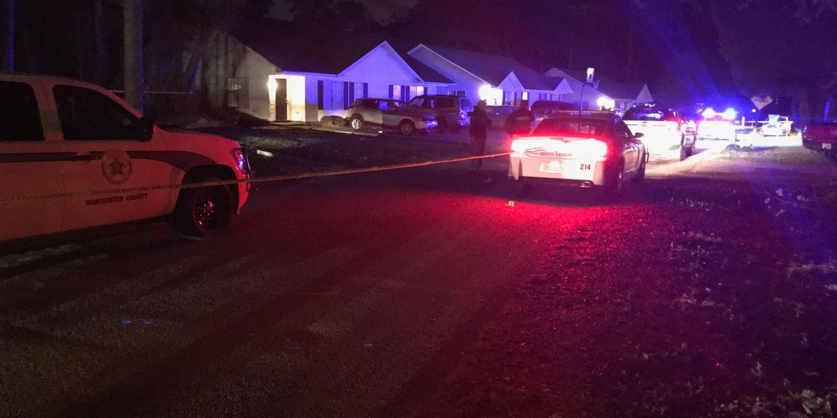 Report: 2 apartments, 5 cars hit by gunfire in Dorchester Co.