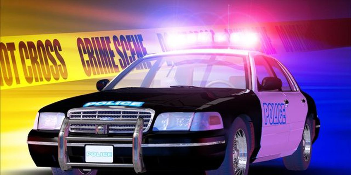 Deputies searching for suspect in Mt. Pleasant armed robbery