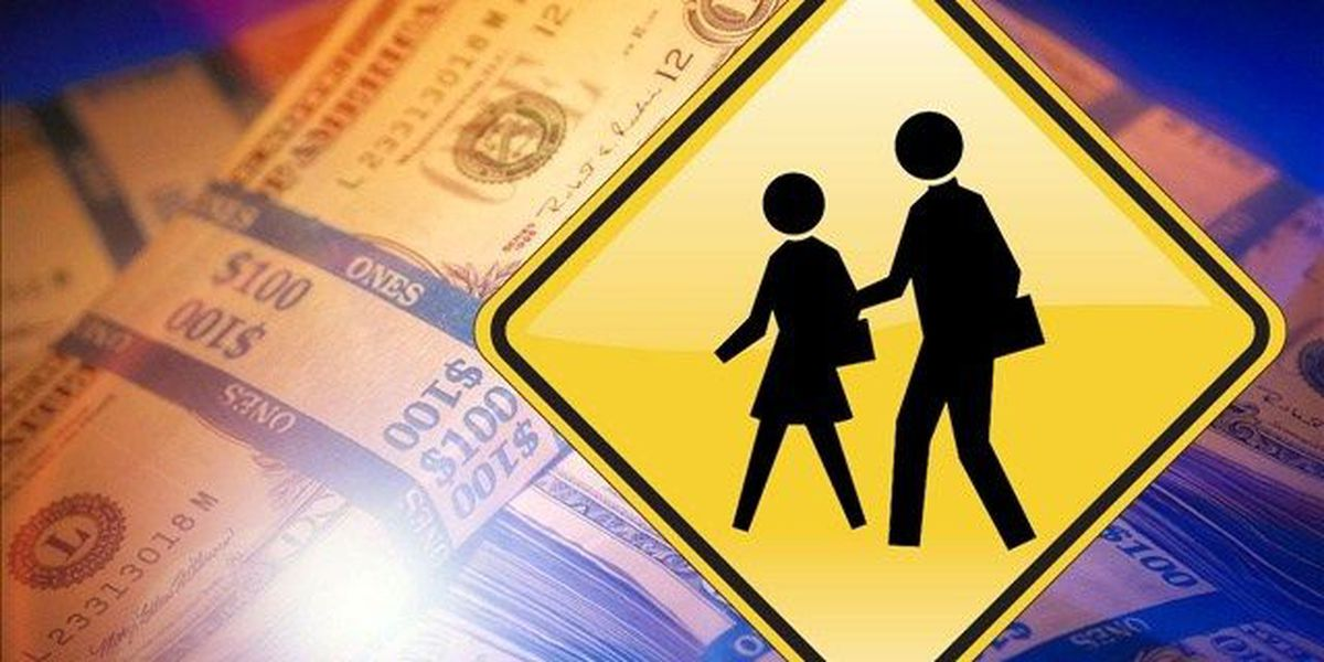 Charleston Co. voters extend one-cent school improvement tax