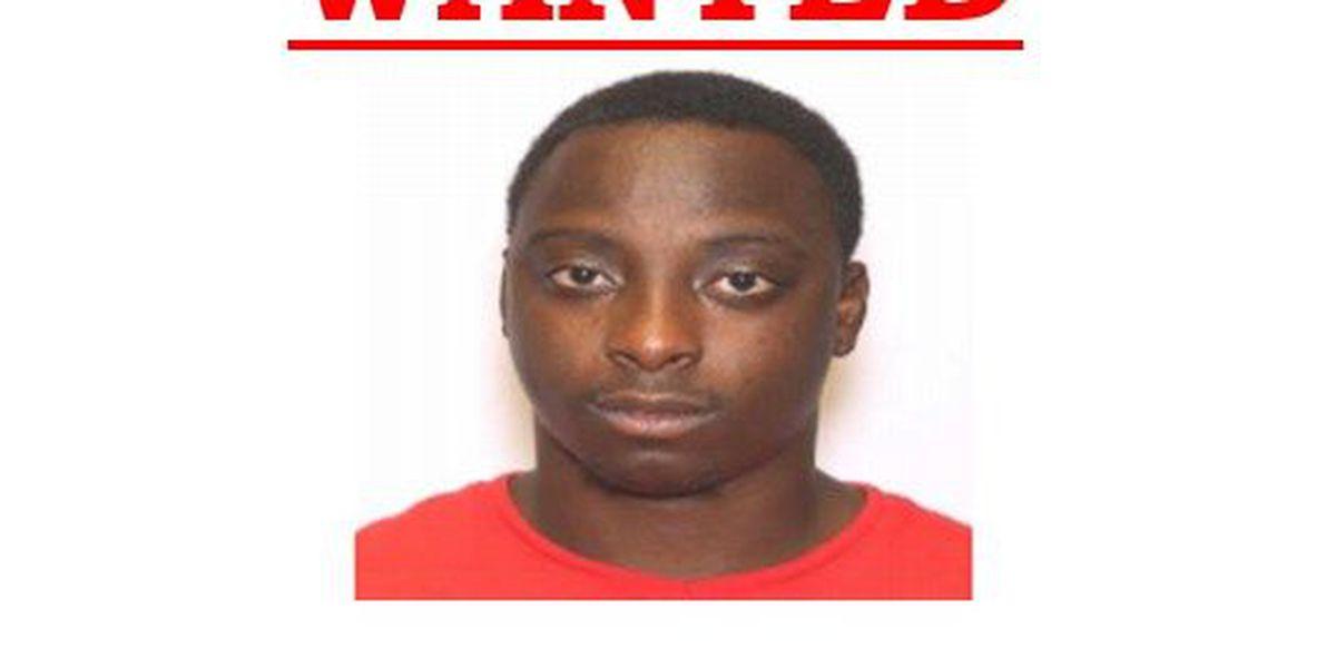 Charleston burglary suspect surrenders to investigators