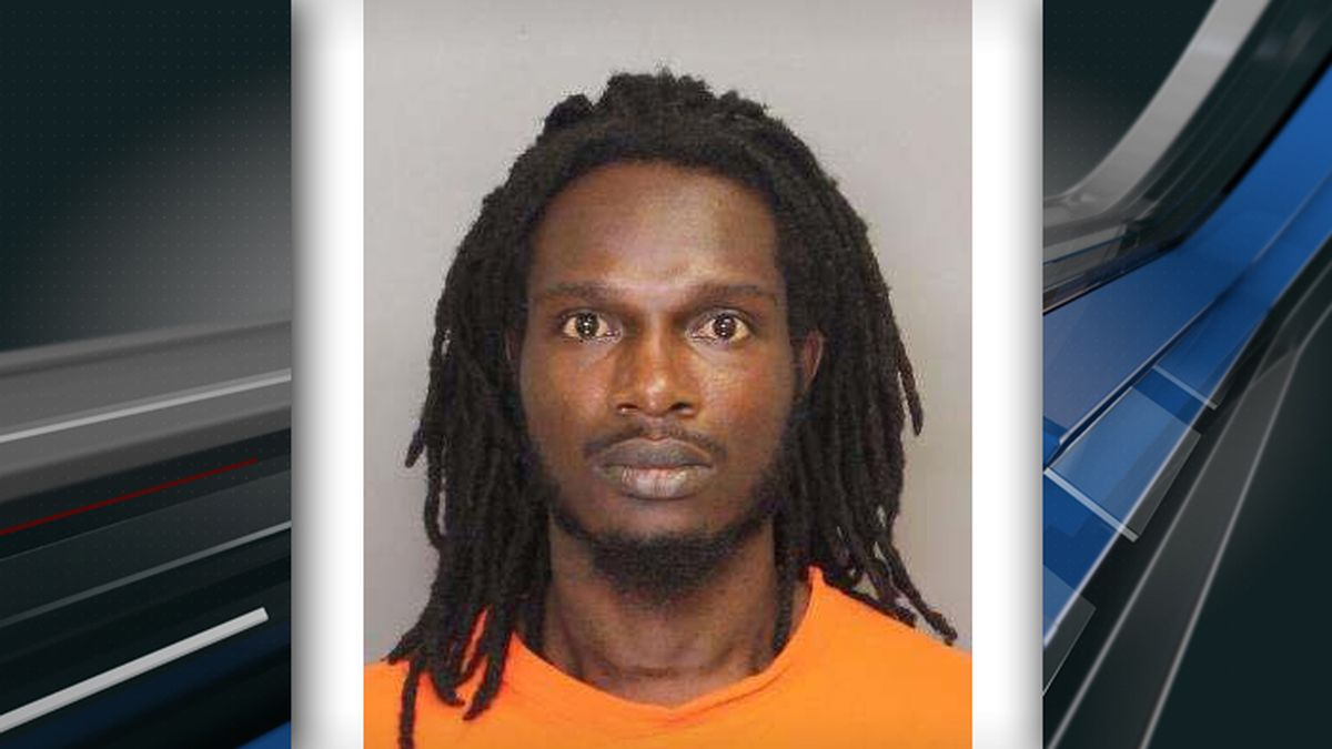 Felon gets 40 years after latest burglary at Dorchester County home