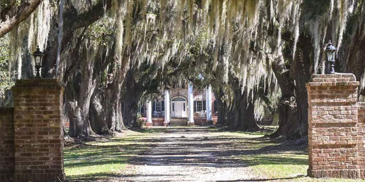 Historic Colleton County plantation sells for $2.4M