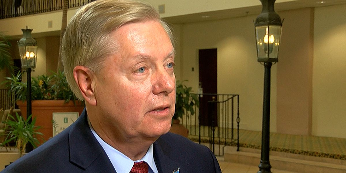 Lindsey Graham responds to Bernie Sanders' proposal on felons voting saying church shooter 'should not have a say'