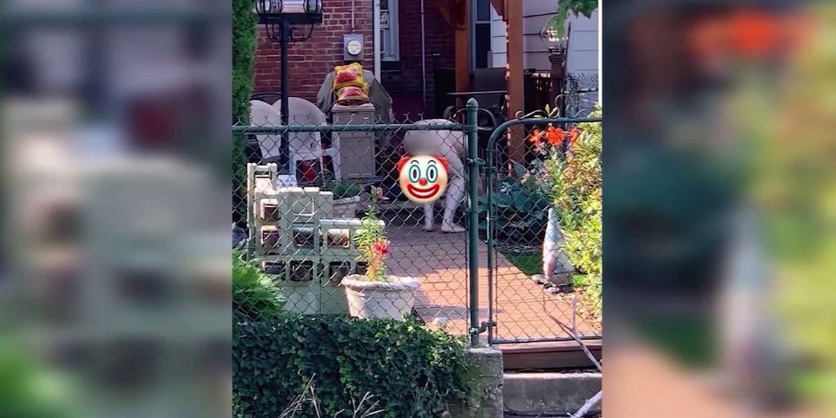 Pa. city official suspended after accusations of gardening nude in view of children