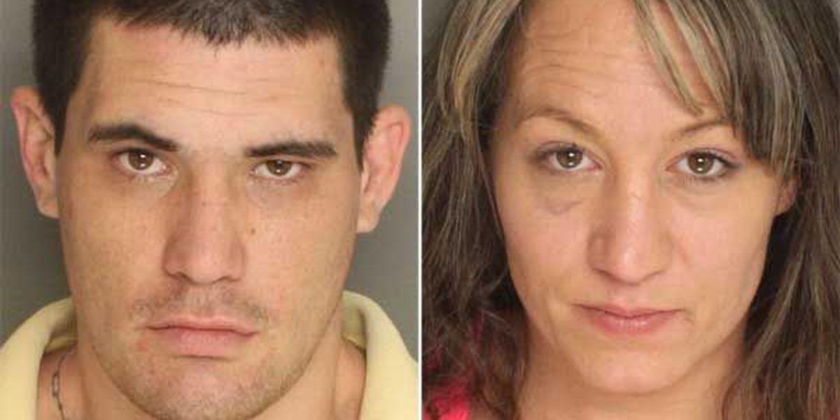 Investigators apprehend suspect in Berkeley Co. theft ring