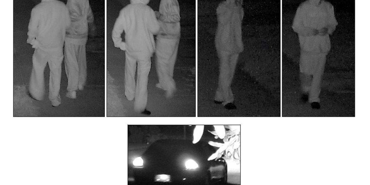Police searching for persons of interest in connection to thefts in Carolina Bay