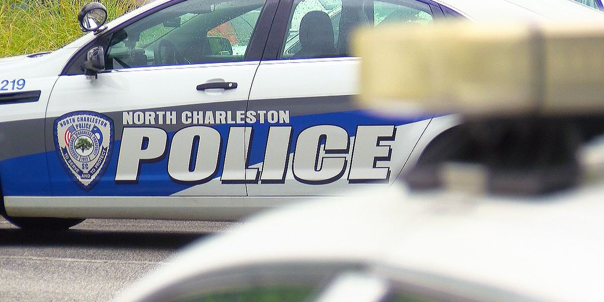 North Charleston creates committee to look at police department