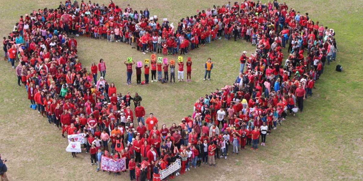 "Goose Creek Elementary's ""Week of Kindness"" culminates in celebration"