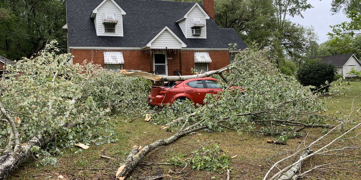 National Weather Service confirms three tornadoes touched down in Georgetown County