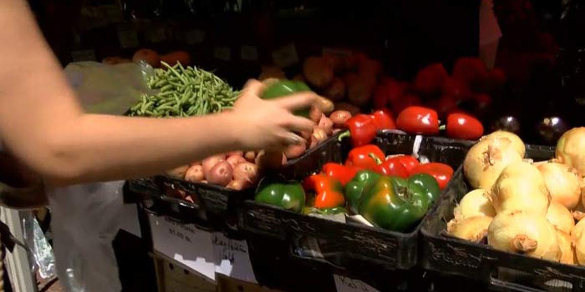 West Ashley Essentials Market to return to Ackerman Park