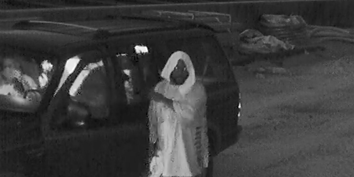 Wanted: Suspect caught on camera stealing more than $4k worth of equipment