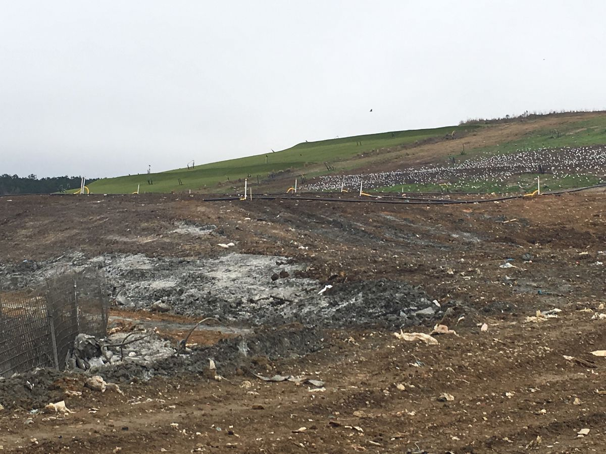 Berkeley Co. completes steps to eliminate landfill odor