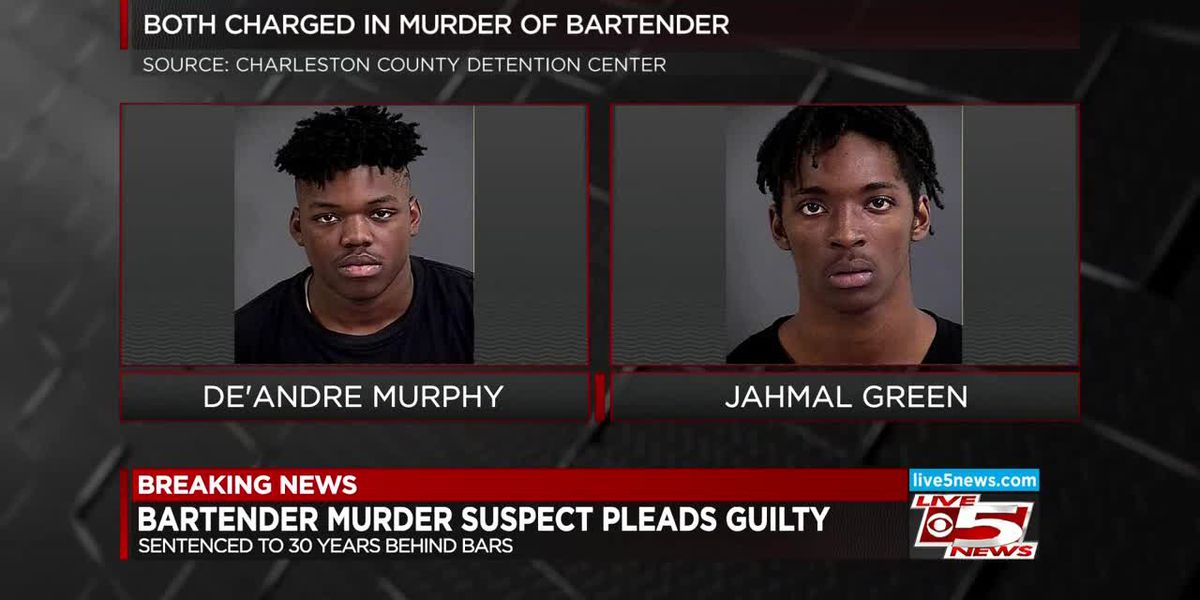 VIDEO: Man pleads guilty, sentenced to 30 years in 2016 killing of N. Charleston bartender