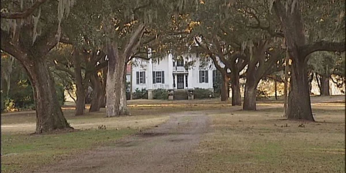 Lowcountry plantations reluctant to respond to wedding venue criticism