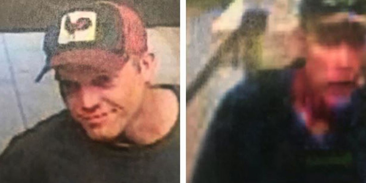 Police searching for two men accused of cashing fraudulent checks