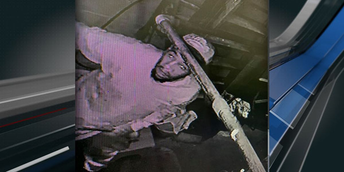 Police searching for suspect in Walterboro car wash break-in