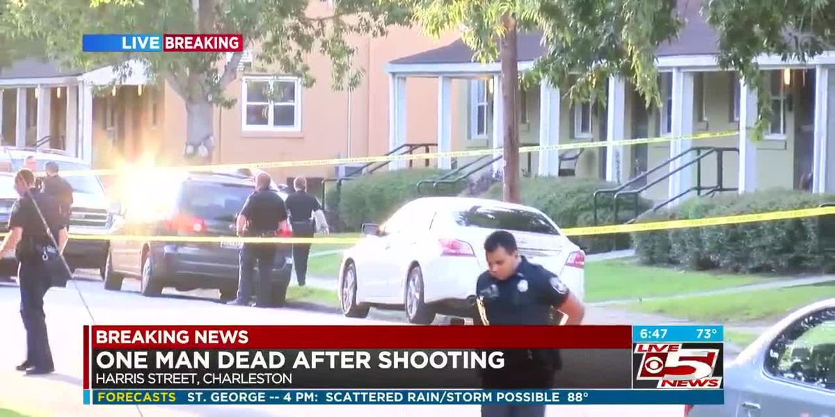 VIDEO: Man killed in early-morning shooting, police investigating