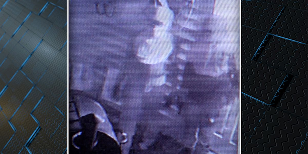 James Island residents on edge after disturbing crime video surfaces