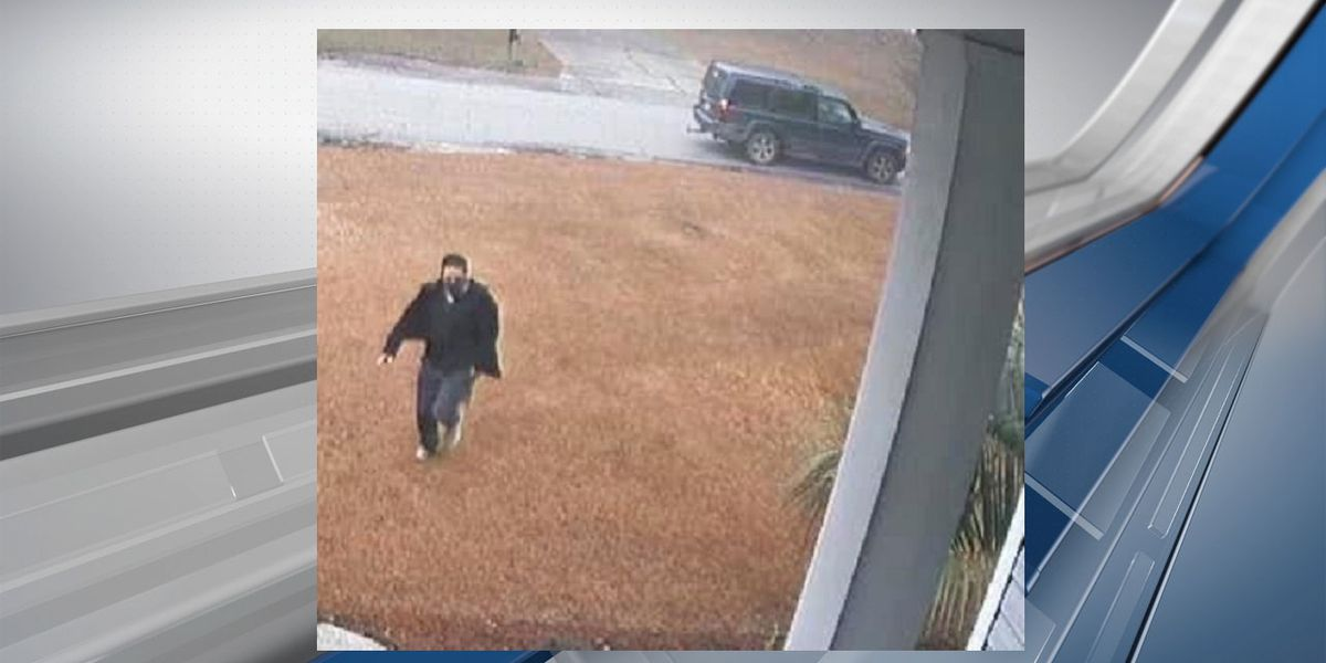 Deputies in Kershaw Co. seek 'porch pirate' wanted for stealing package