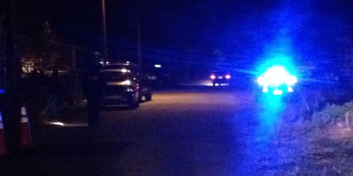 Police investigating following report of shots fired in W. Ashley
