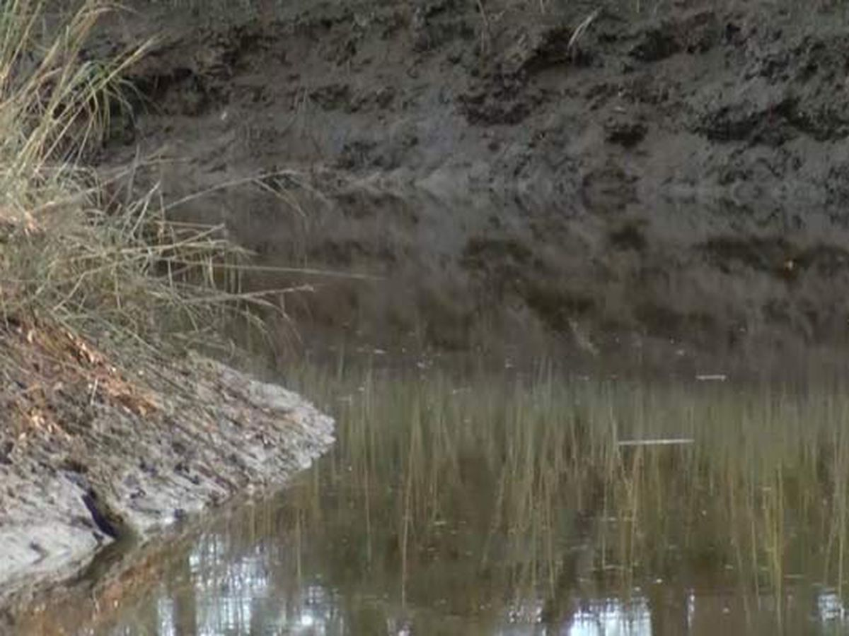 Environmental groups team up to demand new septic tank revisions