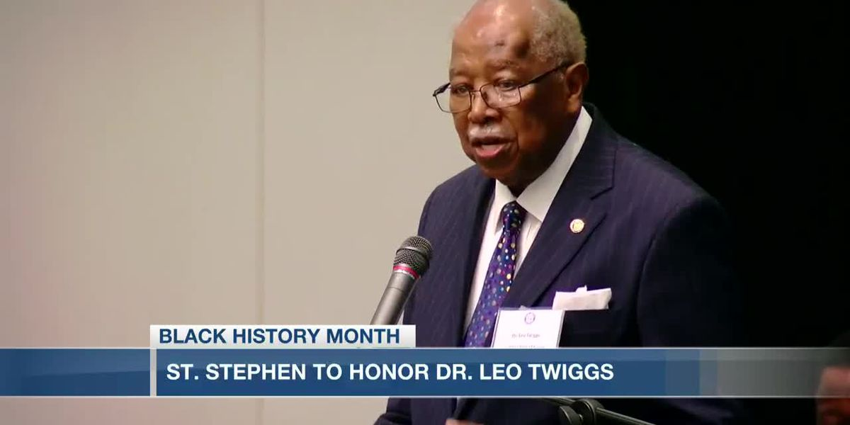 VIDEO: St. Stephen plans to honor artist, educator Dr. Leo Twiggs