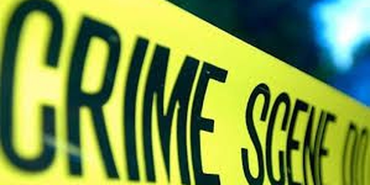 Deputies: Generator stolen from a Charleston Brunch Holiday food truck.