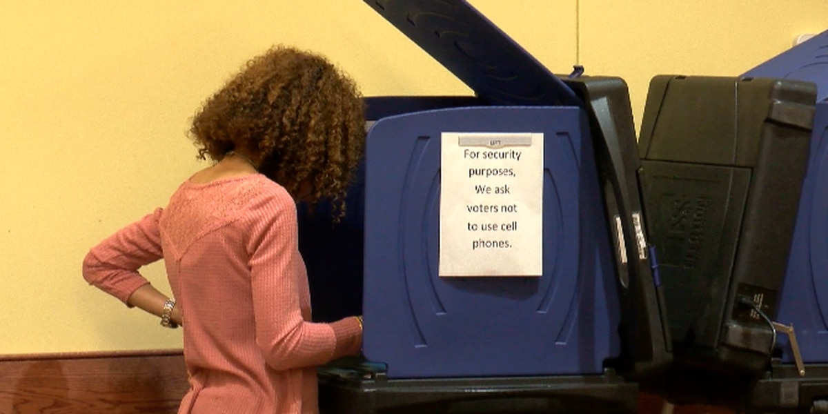 Voting machines could see upgrade after complaints of old technology