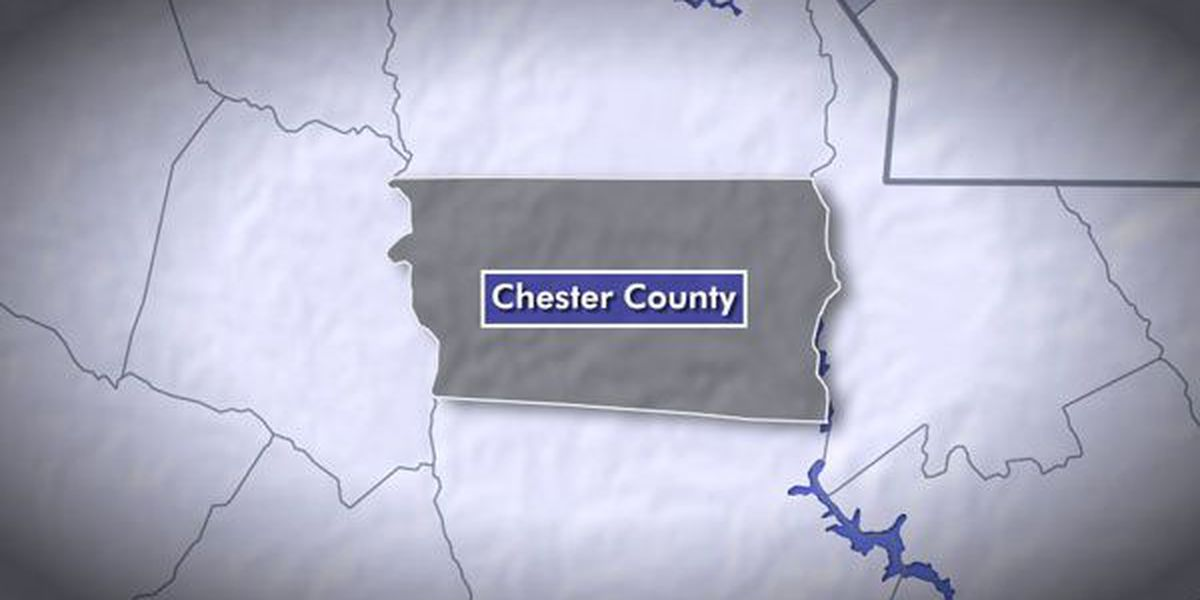 About 50 dogs seized from home in Chester County, S.C.