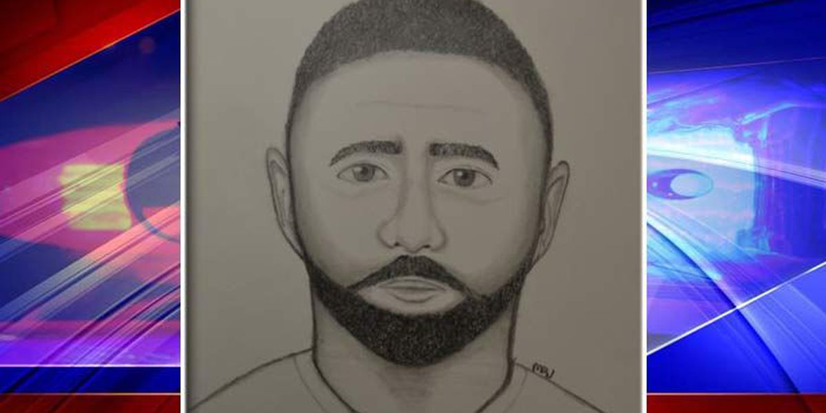 Mt. Pleasant police release sketch of burglar