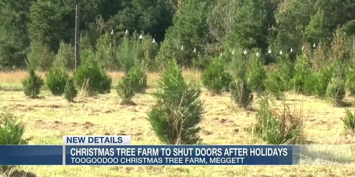VIDEO: Decades old Christmas tree farm will shut doors after holiday season