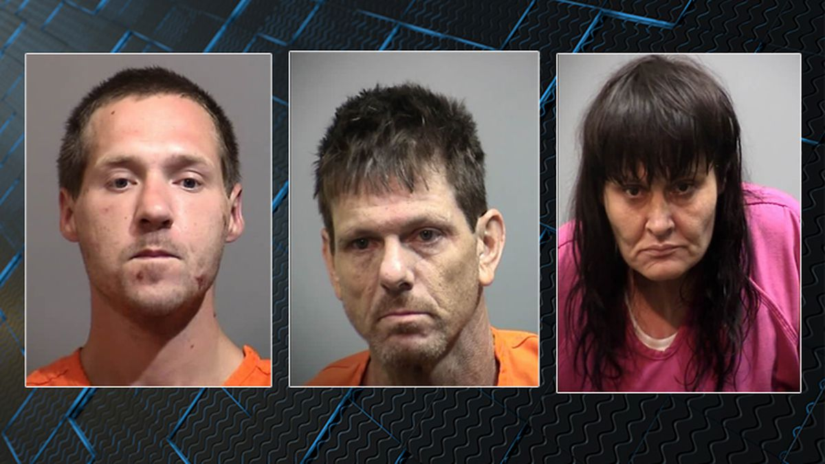Trio arrested after deputies find drugs, guns at Georgetown County home