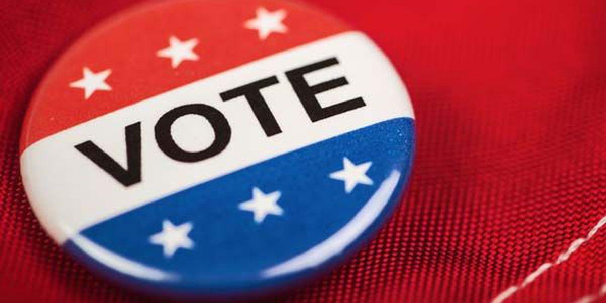 Holman wins Democratic run-off in Dorchester County special primary
