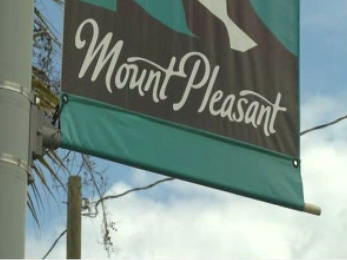 New business license tax could cost Mt. Pleasant property owners $8.5 million, mayor says