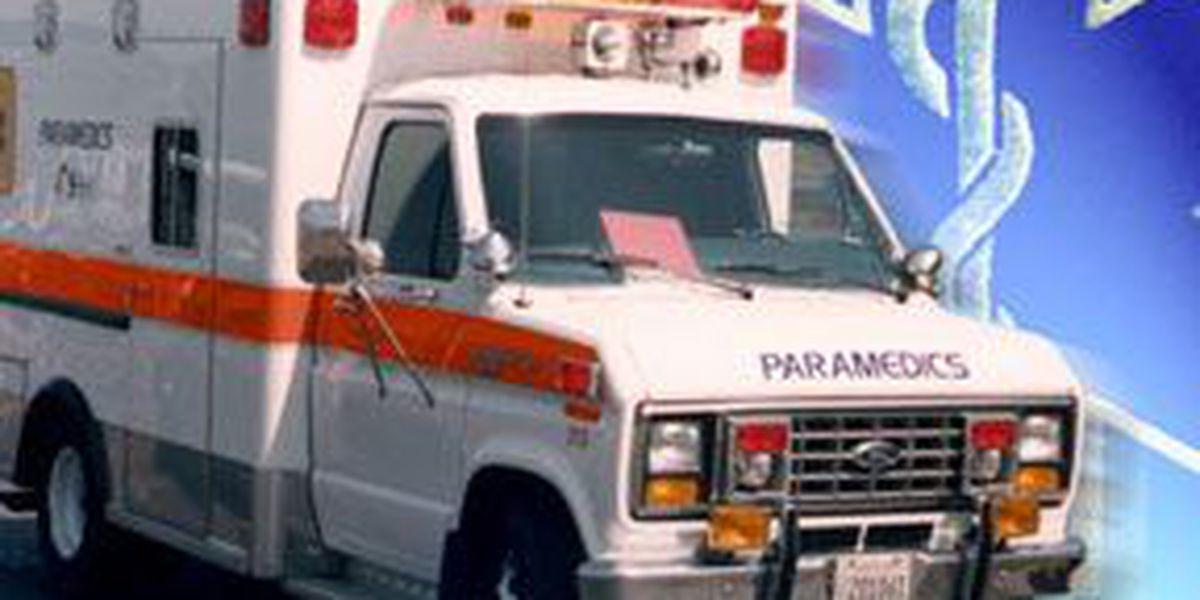 Coroner: Truck overturns killing driver in Berkeley County