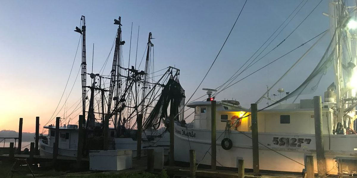 McClellanville working to preserve working waterfront
