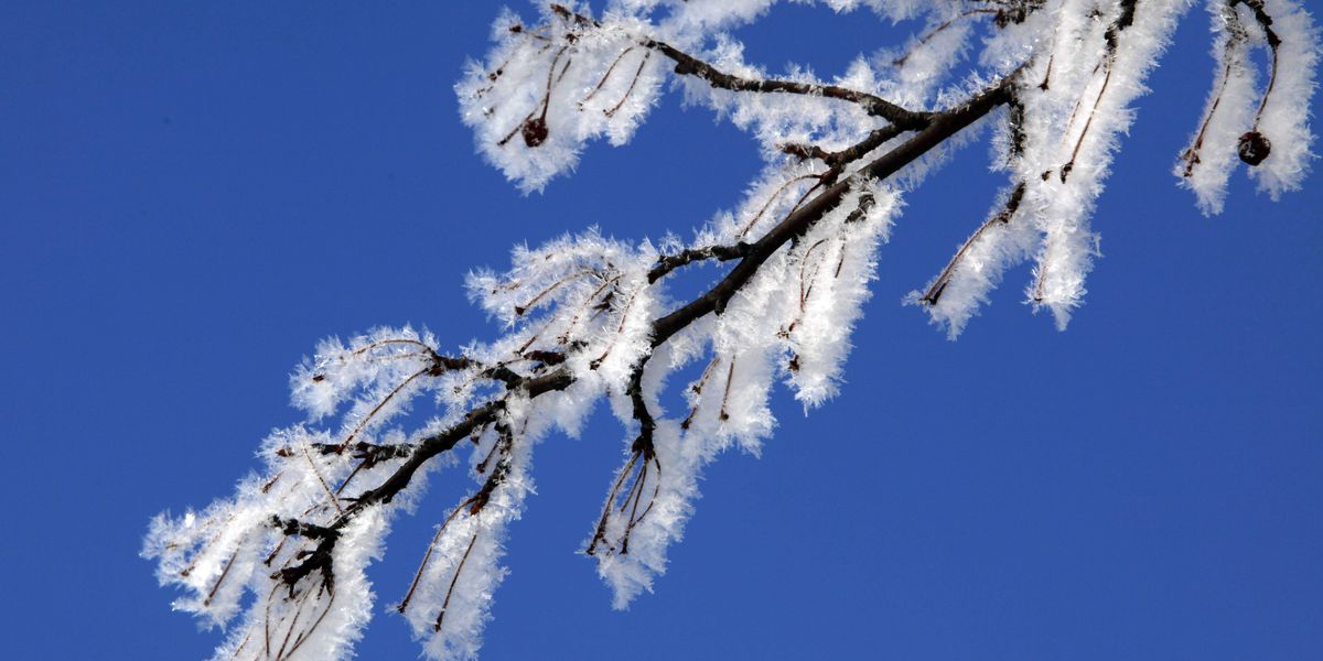 Winter Weather Preparedness Week starts in South Carolina